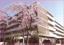特別養護老人ホーム東かなまち桜園